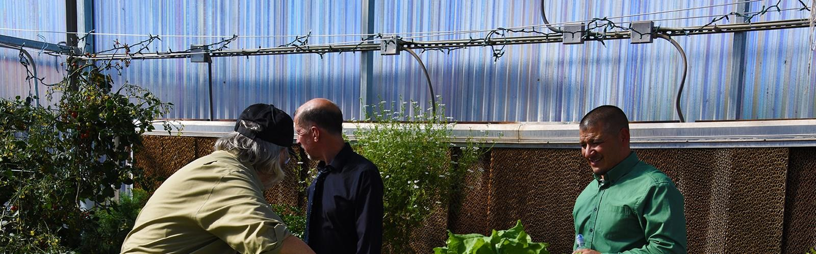 Our greenhouse offers many learning opportunities